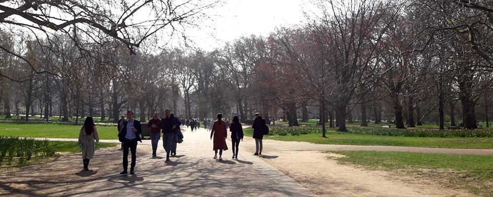 Parque Green Park
